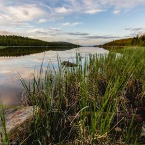 A view of Ukonjärvi in summer