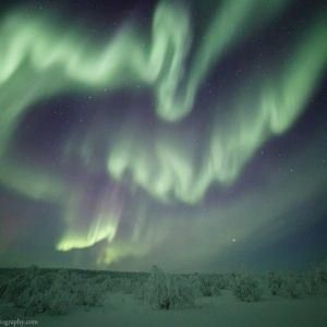 Zigzag Aurora near Inari in Finnish Lapland