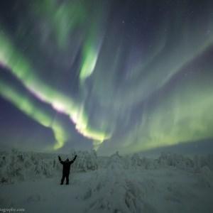 Rayann Elzein enjoying the Aurora between the Frozen Trees in Inari