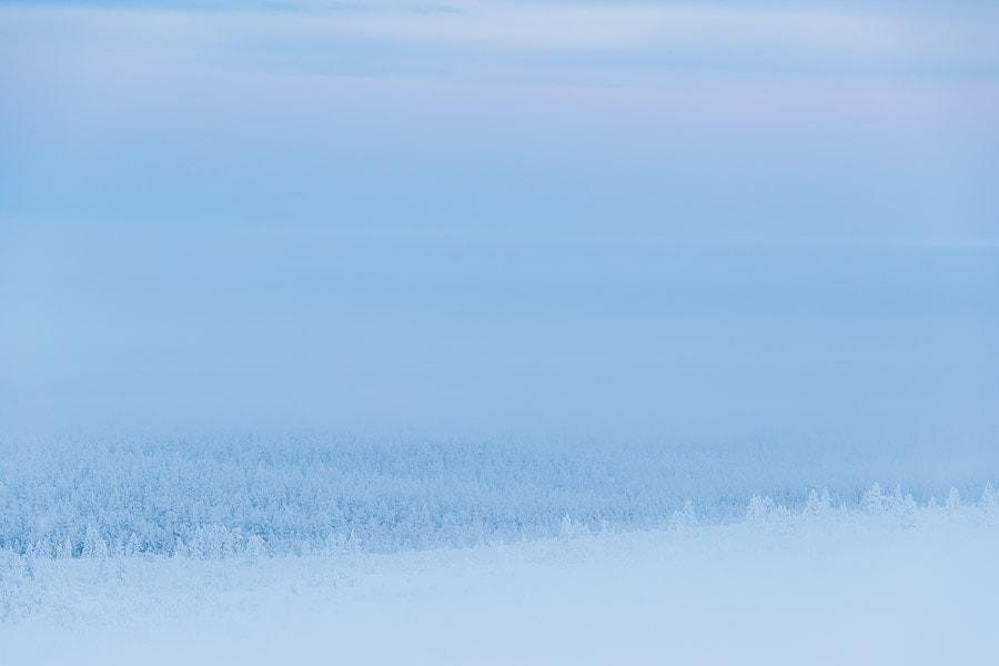 Foggy view from the top of the Kaunispää fell