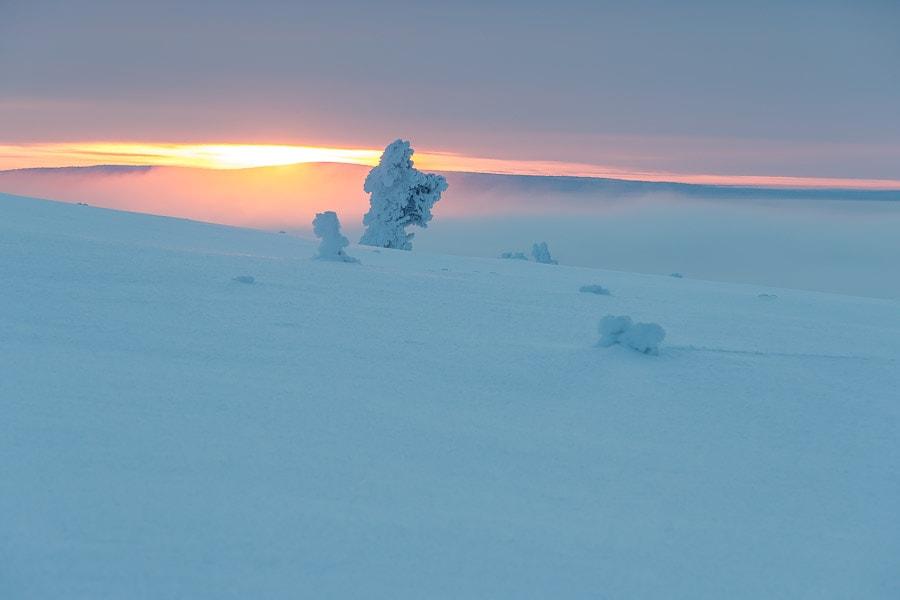 Quite the view from Saariselkä