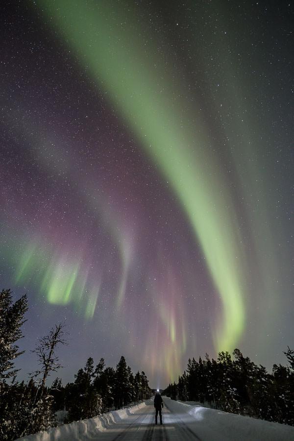 Rayann Elzein enjoying the Northern Lights on a road near Inari in Finnish Lapland