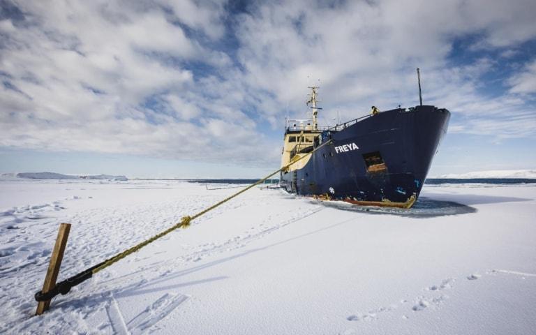 Expédition au Svalbard sur le MS Freya (4-10 mai 2018)