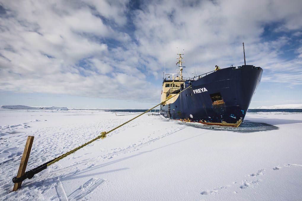 Le navire d'expédition MS Freya dans la banquise au Svalbard