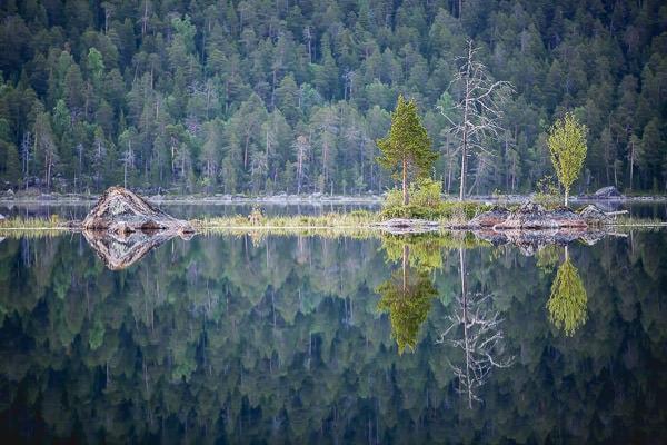 été en Laponie