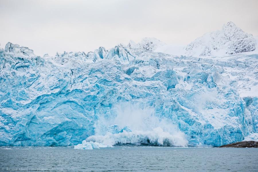 Blue glacier calving